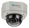 Everfocus EHN3260